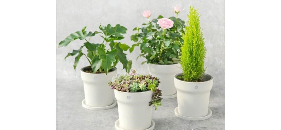 MIJIA smart flower pot 4